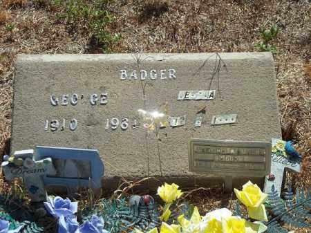 BADGER, GEORGE - Delaware County, Oklahoma | GEORGE BADGER - Oklahoma Gravestone Photos
