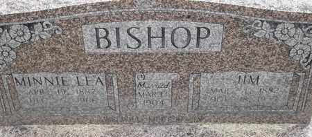 BISHOP, JIM - Delaware County, Oklahoma | JIM BISHOP - Oklahoma Gravestone Photos