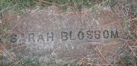BLOSSOM, SARAH - Delaware County, Oklahoma | SARAH BLOSSOM - Oklahoma Gravestone Photos