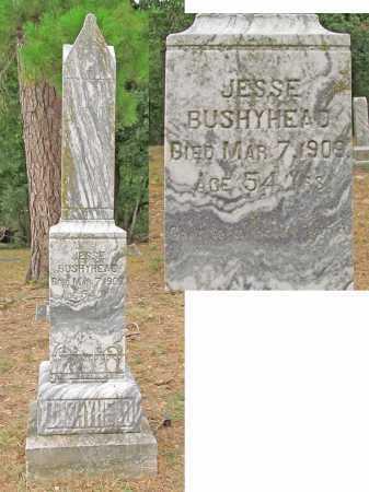 BUSHYHEAD, JESSE - Delaware County, Oklahoma   JESSE BUSHYHEAD - Oklahoma Gravestone Photos