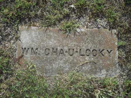 CHA-U-LOOKY, WM - Delaware County, Oklahoma | WM CHA-U-LOOKY - Oklahoma Gravestone Photos