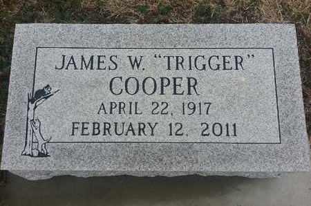 COOPER, JAMES W - Delaware County, Oklahoma | JAMES W COOPER - Oklahoma Gravestone Photos