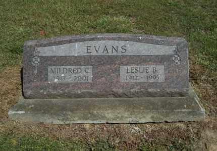 EVANS, LESLIE B - Delaware County, Oklahoma   LESLIE B EVANS - Oklahoma Gravestone Photos