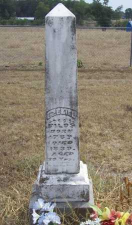 FIELDS, EZEKIEL - Delaware County, Oklahoma | EZEKIEL FIELDS - Oklahoma Gravestone Photos