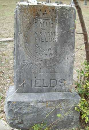 FIELDS, OLLIE - Delaware County, Oklahoma | OLLIE FIELDS - Oklahoma Gravestone Photos