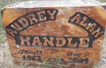 HANDLE, AUDREY ALAN - Delaware County, Oklahoma | AUDREY ALAN HANDLE - Oklahoma Gravestone Photos