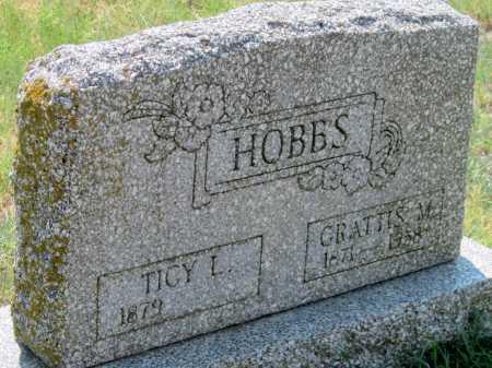 SUITER HOBBS, TICY LEE - Delaware County, Oklahoma | TICY LEE SUITER HOBBS - Oklahoma Gravestone Photos
