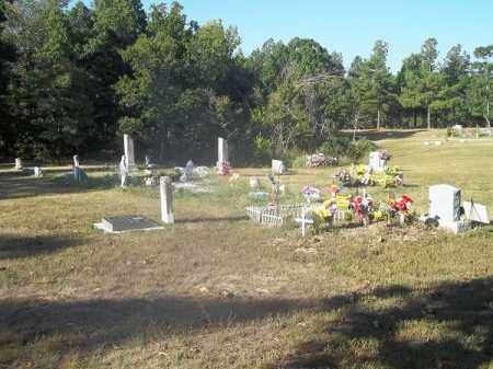 *ROUND SPRINGS CEMETERY OVERVI, . - Delaware County, Oklahoma | . *ROUND SPRINGS CEMETERY OVERVI - Oklahoma Gravestone Photos