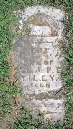 TILEY, ELBERT H - Delaware County, Oklahoma | ELBERT H TILEY - Oklahoma Gravestone Photos