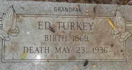 TURKEY, ED - Delaware County, Oklahoma | ED TURKEY - Oklahoma Gravestone Photos
