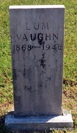 VAUGHN, LUM - Delaware County, Oklahoma | LUM VAUGHN - Oklahoma Gravestone Photos