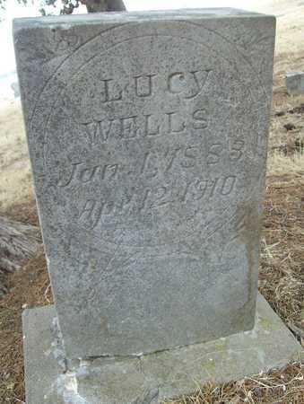 WELLS, LUCY - Delaware County, Oklahoma | LUCY WELLS - Oklahoma Gravestone Photos
