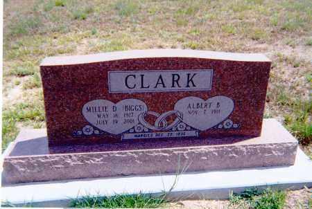 CLARK, ALBERT - Dewey County, Oklahoma   ALBERT CLARK - Oklahoma Gravestone Photos