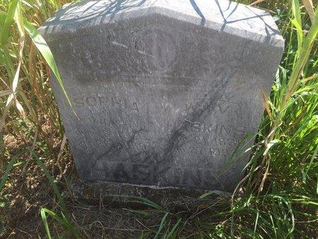 HASKINS, WILLIAM V - Grant County, Oklahoma | WILLIAM V HASKINS - Oklahoma Gravestone Photos