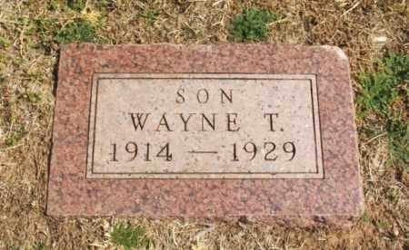 COTNEY, WAYNE T - Jackson County, Oklahoma | WAYNE T COTNEY - Oklahoma Gravestone Photos