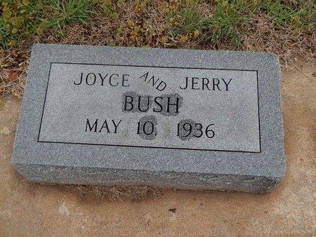 BUSH, JERRY - Kay County, Oklahoma | JERRY BUSH - Oklahoma Gravestone Photos
