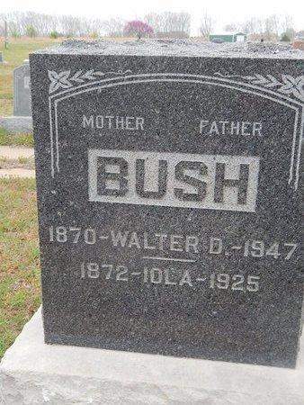 BUSH, WALTER D - Kay County, Oklahoma | WALTER D BUSH - Oklahoma Gravestone Photos
