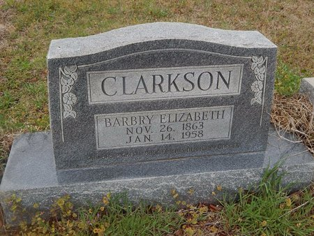 CLARKSON, BARBRY ELIZABETH - Kay County, Oklahoma   BARBRY ELIZABETH CLARKSON - Oklahoma Gravestone Photos