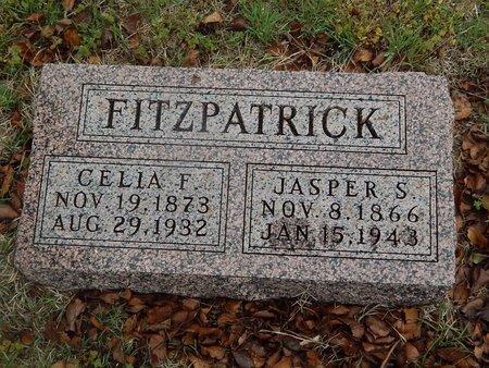 FITZPATRICK, JASPER S - Kay County, Oklahoma | JASPER S FITZPATRICK - Oklahoma Gravestone Photos