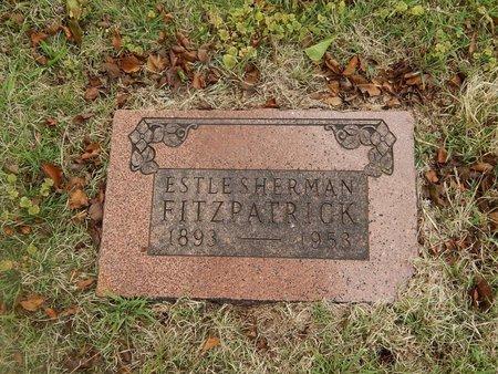 FITZPATRICK, ESTLE SHERMAN - Kay County, Oklahoma | ESTLE SHERMAN FITZPATRICK - Oklahoma Gravestone Photos