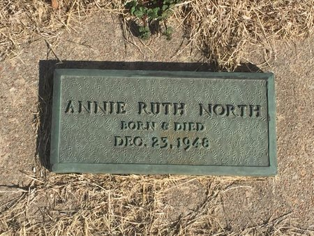 NORTH, ANNIE RUTH - Kay County, Oklahoma | ANNIE RUTH NORTH - Oklahoma Gravestone Photos