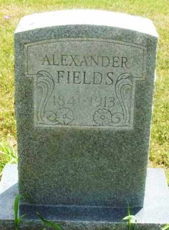 FIELDS, ALEXANDER - Kiowa County, Oklahoma | ALEXANDER FIELDS - Oklahoma Gravestone Photos