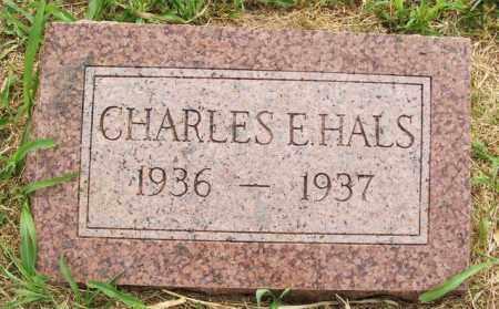 HALS, CHARLES E - Kiowa County, Oklahoma | CHARLES E HALS - Oklahoma Gravestone Photos