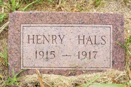 HALS, HENRY - Kiowa County, Oklahoma   HENRY HALS - Oklahoma Gravestone Photos
