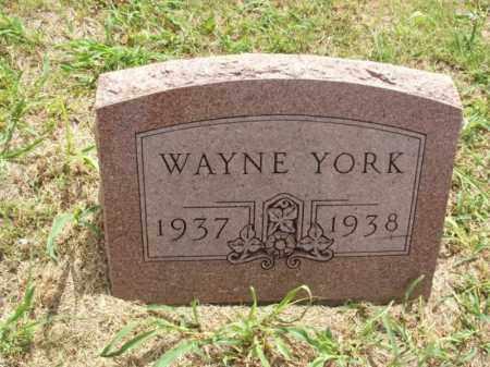 YORK, WAYNE - Kiowa County, Oklahoma | WAYNE YORK - Oklahoma Gravestone Photos