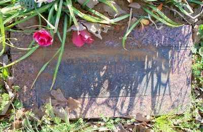 PHELPS CLARK, JESSIE G - Le Flore County, Oklahoma | JESSIE G PHELPS CLARK - Oklahoma Gravestone Photos
