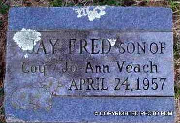 VEACH, JAY FRED - Le Flore County, Oklahoma | JAY FRED VEACH - Oklahoma Gravestone Photos