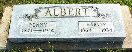 ALBERT, HARVEY - Nowata County, Oklahoma | HARVEY ALBERT - Oklahoma Gravestone Photos