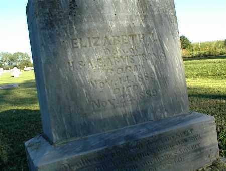 ARMSTRONG, ELIZABETH L. - Nowata County, Oklahoma | ELIZABETH L. ARMSTRONG - Oklahoma Gravestone Photos