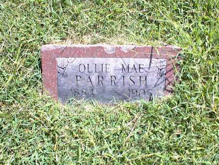 PARRISH, OLLIE MAE - Nowata County, Oklahoma | OLLIE MAE PARRISH - Oklahoma Gravestone Photos