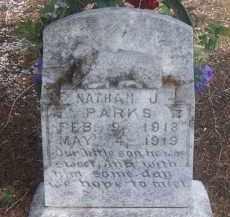 PARKS, NATHAN J. - Stephens County, Oklahoma | NATHAN J. PARKS - Oklahoma Gravestone Photos