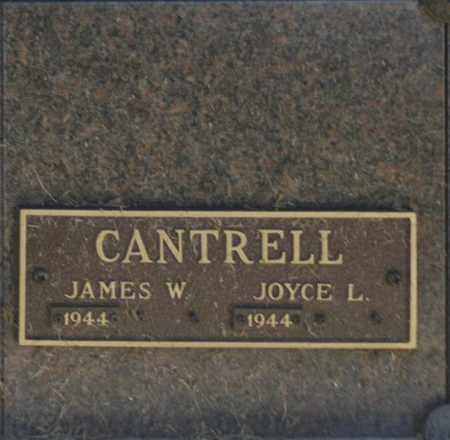 CANTRELL, JOYCE L - Washington County, Oklahoma | JOYCE L CANTRELL - Oklahoma Gravestone Photos