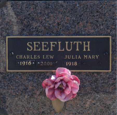 SEEFLUTH, JULIA MARY - Washington County, Oklahoma   JULIA MARY SEEFLUTH - Oklahoma Gravestone Photos