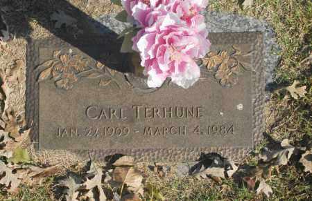 TERHUNE, CARL - Washington County, Oklahoma | CARL TERHUNE - Oklahoma Gravestone Photos