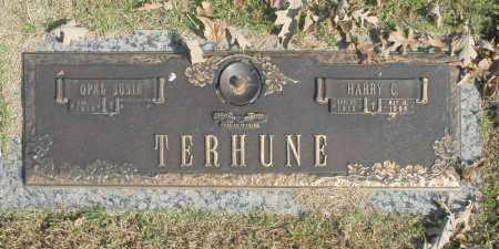 TERHUNE, OPAL SUSIE - Washington County, Oklahoma | OPAL SUSIE TERHUNE - Oklahoma Gravestone Photos