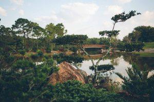 Morikami Museum and Japanese Gardens - Woodruff Bridge