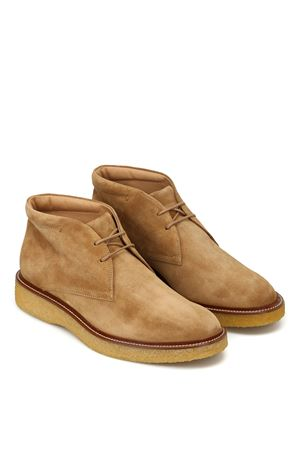 Desert Boots in Suede TOD