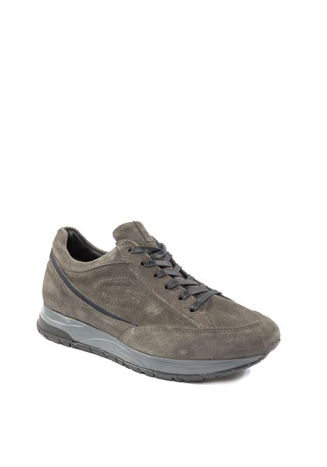 Sneaker camoscio grigio ALBERTO GUARDIANI | Sneakers | 4801CAM-GREY
