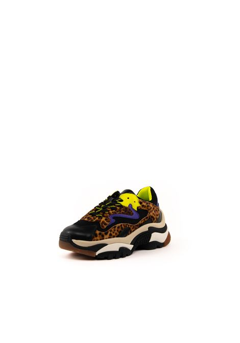 ASH SNEAKER ADDICT MESH ANIMALIER ASH | Sneakers | ADDICTMESH-05