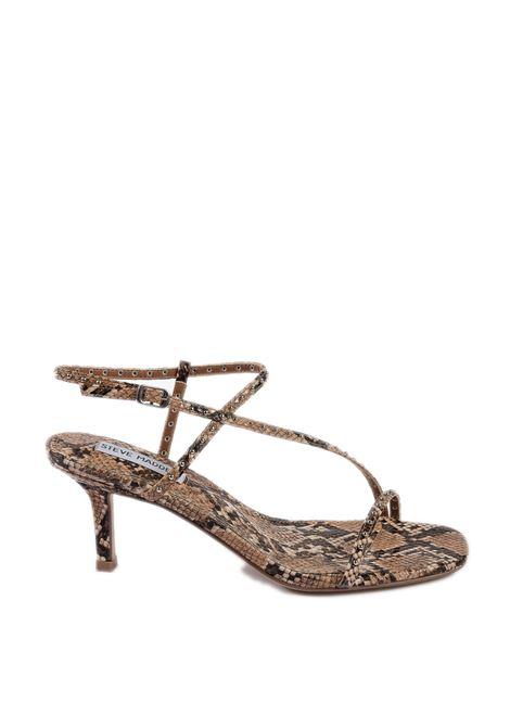 Sandalo lizzo cuoio STEVE MADDEN | Sandali | LIZZOSNAKE-TAN