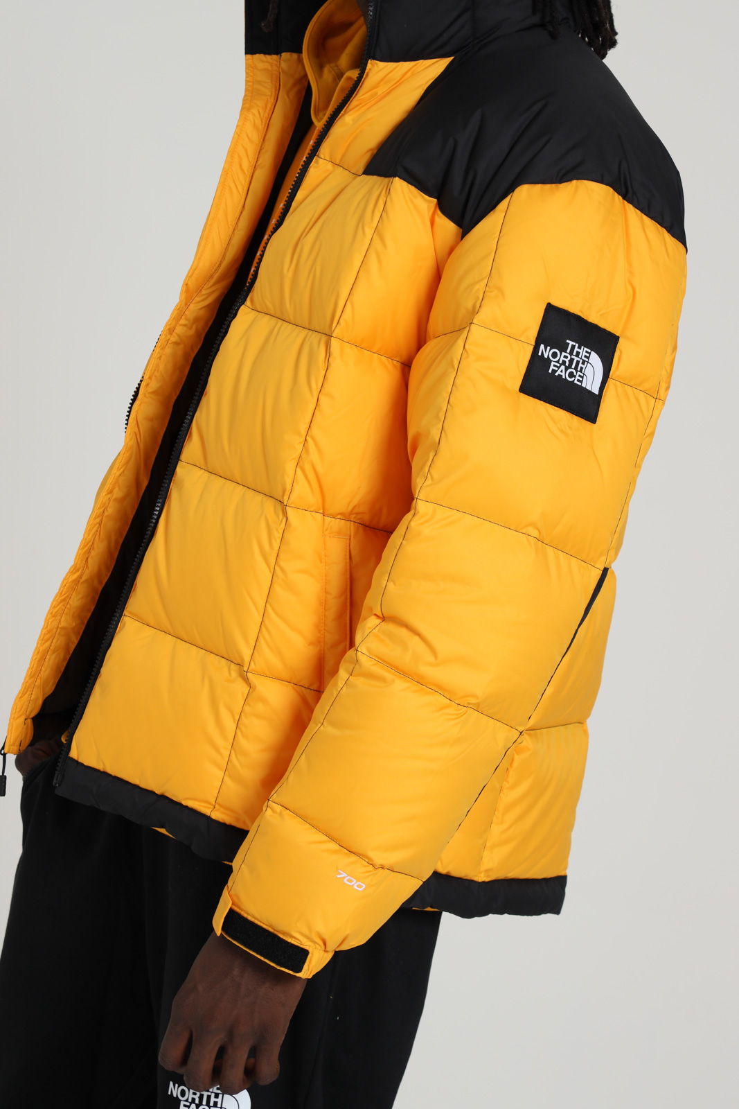 Giubbotto con zip bicolore THE NORTH FACE | Giubbotti | NF0A3Y2356P156P1