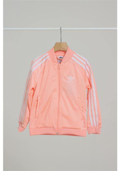 ADIDAS | Sweatshirt | GD2674HAZCOR/WHITE