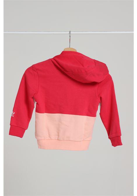 ADIDAS | Sweatshirt | GD2721POWPNK/HAZCOR
