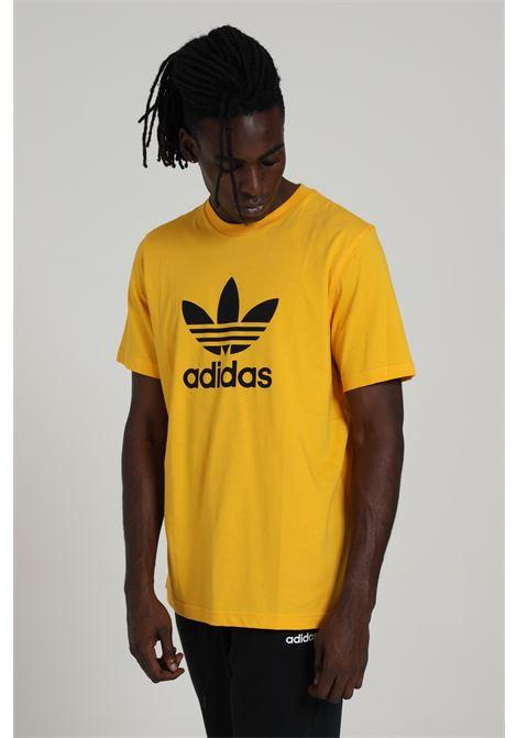 ADIDAS   T-shirt   GD9913ACTGOL