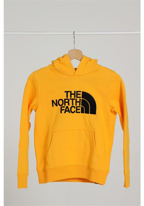 Felpa con cappuccio THE NORTH FACE | Felpe | NF0A33H456P156P1