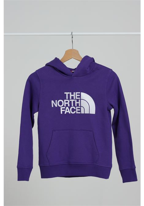 THE NORTH FACE | Felpe | NF0A33H4NL41NL41